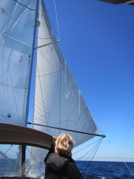 Poled Out Headsail