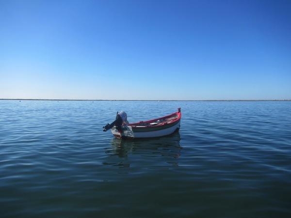 Arty boat