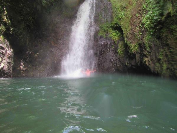 Grenada Diving In The Falls