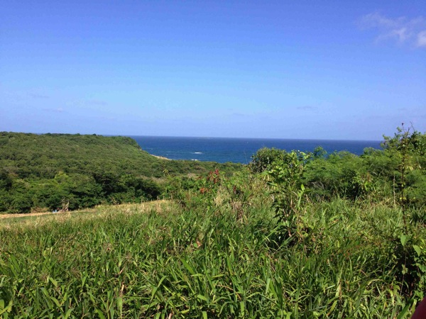 Grenada View