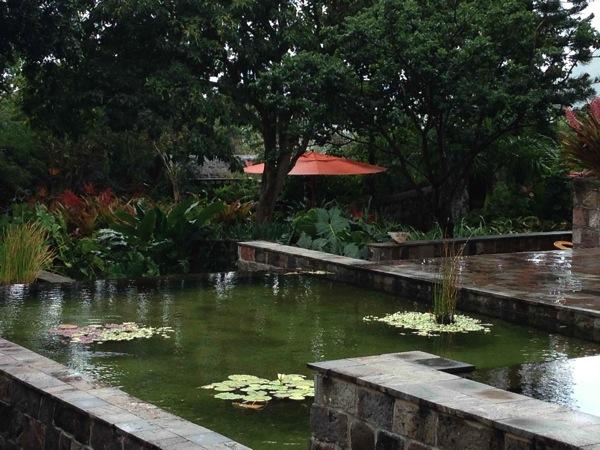 Plantation garden 2 Nevis