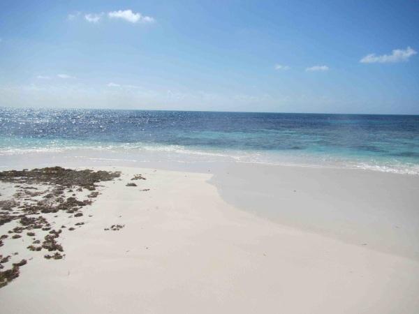 Barbuda 2