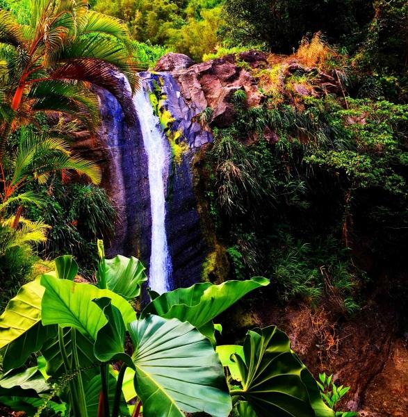 Arty Farty Waterfall 2