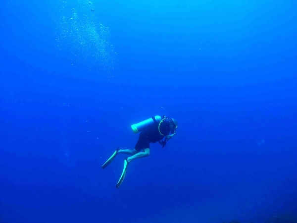 Cool Diving Photo 1