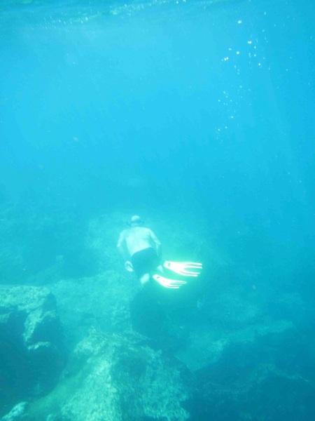 Freediver Ju
